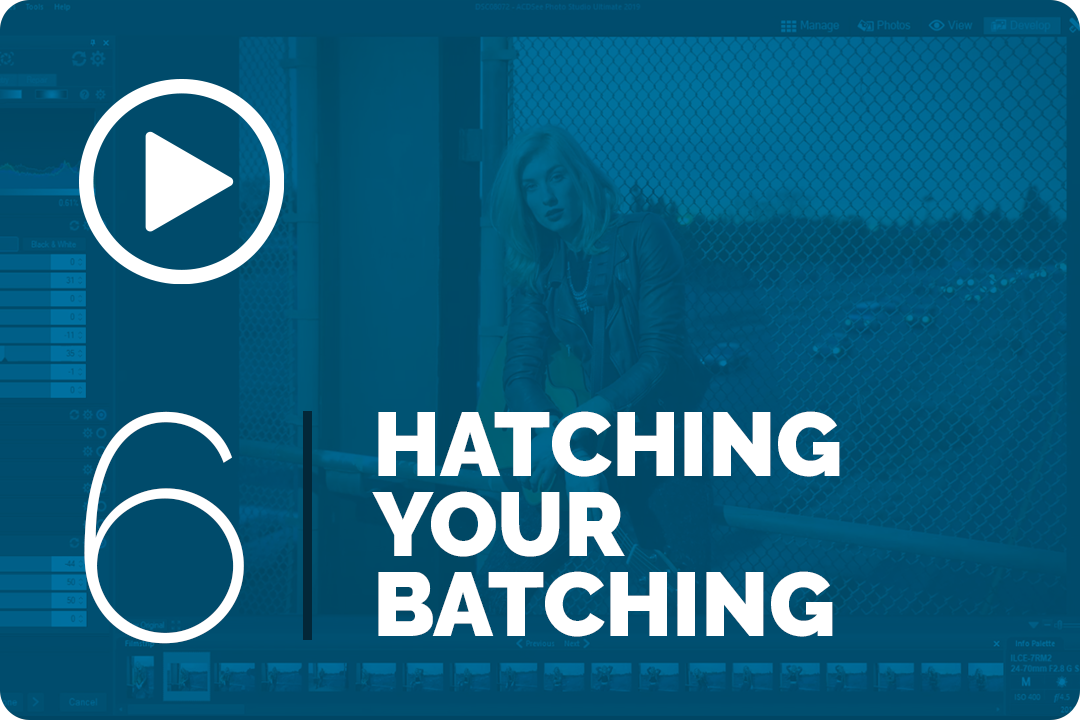 Hatching your batching