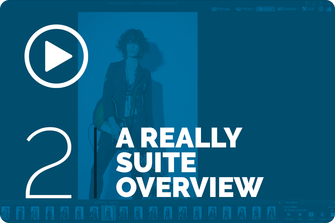 A really suite overview