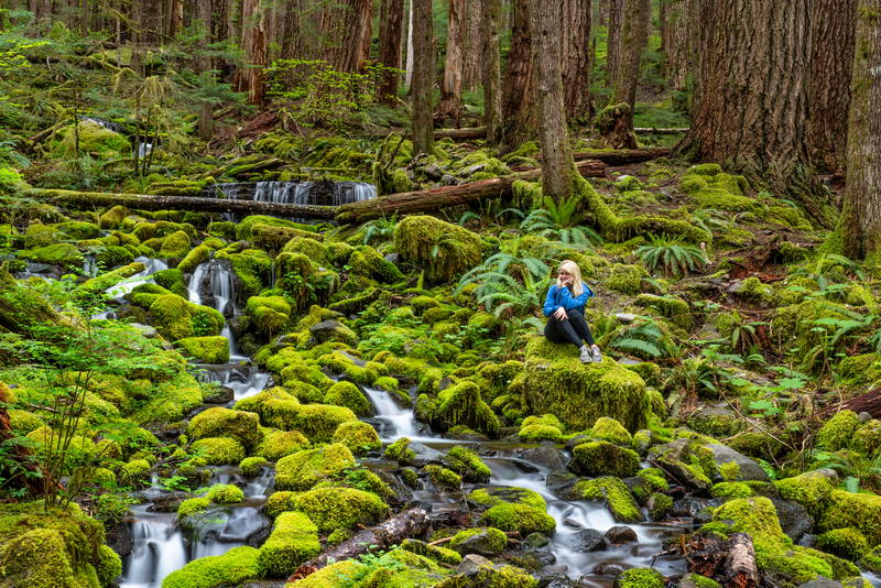 Woman in forest on green moss, sitting on the rocks. Stock Photography Free for Commercial Use.