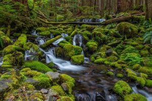 Running creek with blur with waterfall. Stock Photography Free for Commercial Use.
