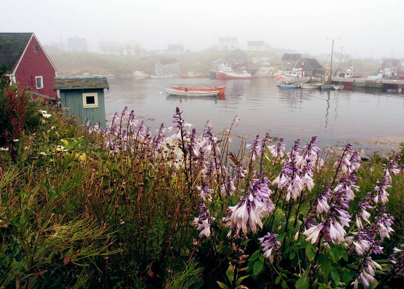 Foggy Maritime landscape. Stock Photography Free for Commercial Use.